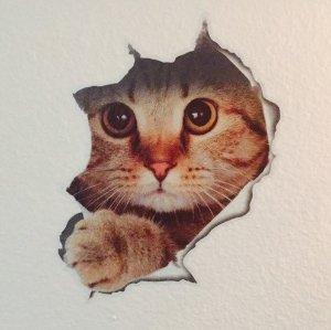 现价$5.98起可爱猫咪装饰壁纸