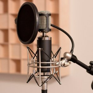 $79Marantz Professional MPM-2000 Large-Diaphragm Condenser Microphone