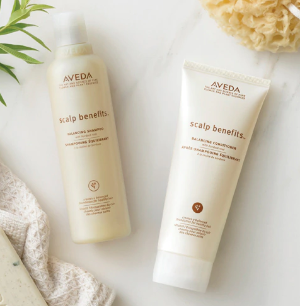 Ending Soon: Choose Your Travel Size Shampure Or Rosemary Mint + Pick a 4 Pc Hair Care Kitwith a Bag + free shipping @ Aveda