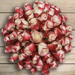 $49.99 免运 + 可选2月14日送达非会员也可购买:Costco 精选 50支玫瑰预定(多款可选)